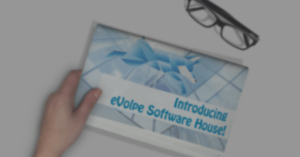 evolpe software house